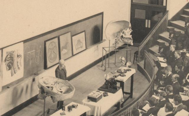 Thomas Dwight lecturing in amphitheater, with Dwight-Emerton skull models, c. 1906., Harvard Medical Library in the Francis A. Countway Library of Medicine