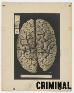 This poster, an example of the criminal brain, is part of Myrtelle Canavan`s collection. Other examples of Canavan`s work are available via OnView.