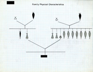 Family Physical Characteristics Three-Generation Tree, created for a subject during the Harvard School of Public Health Longitudinal Studies of Child Health and Development. Subject name and number have been redacted.