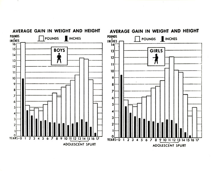 Average Height And Weight Gains By Age Bar Graph