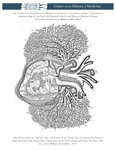 The Heart with the Auricles, &c. fill'd with Wax. From: The Anatomy of the Humane Body Illustrated with Twenty-three Copper-plates of the Most Considerable Parts All Done After the Life by William Cheselden, 1713.