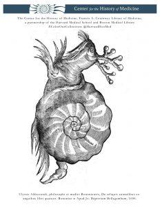 Ulyssis Aldrovandi, philosophi et medici Bononiensis, De reliquis animalibus exanguibus libri quatuor. Bononiae, Apud Jo. Baptistam Bellagambam, 1606.