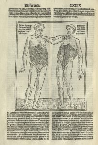 Incunabula volume, 1496